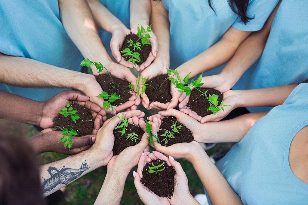 Bolsas Sostenibles con el medio ambiente 16