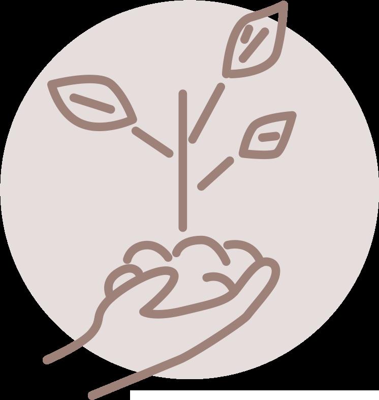 plantamos tu arbol