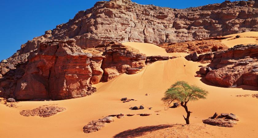 desierto del sahel