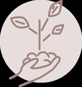 plantamos tu árbol